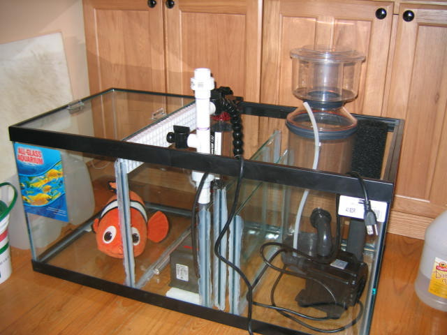 DIY 40 gallon Sump/fuge