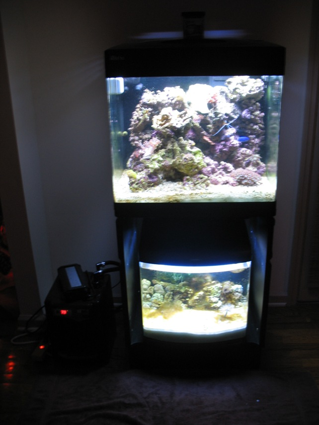 RSM with Refugium and home made over flow