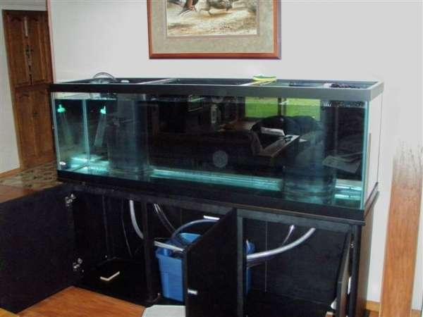 Aquarium stand shims aquarium and enjoy the clean lines for 125 gallon fish tank stand